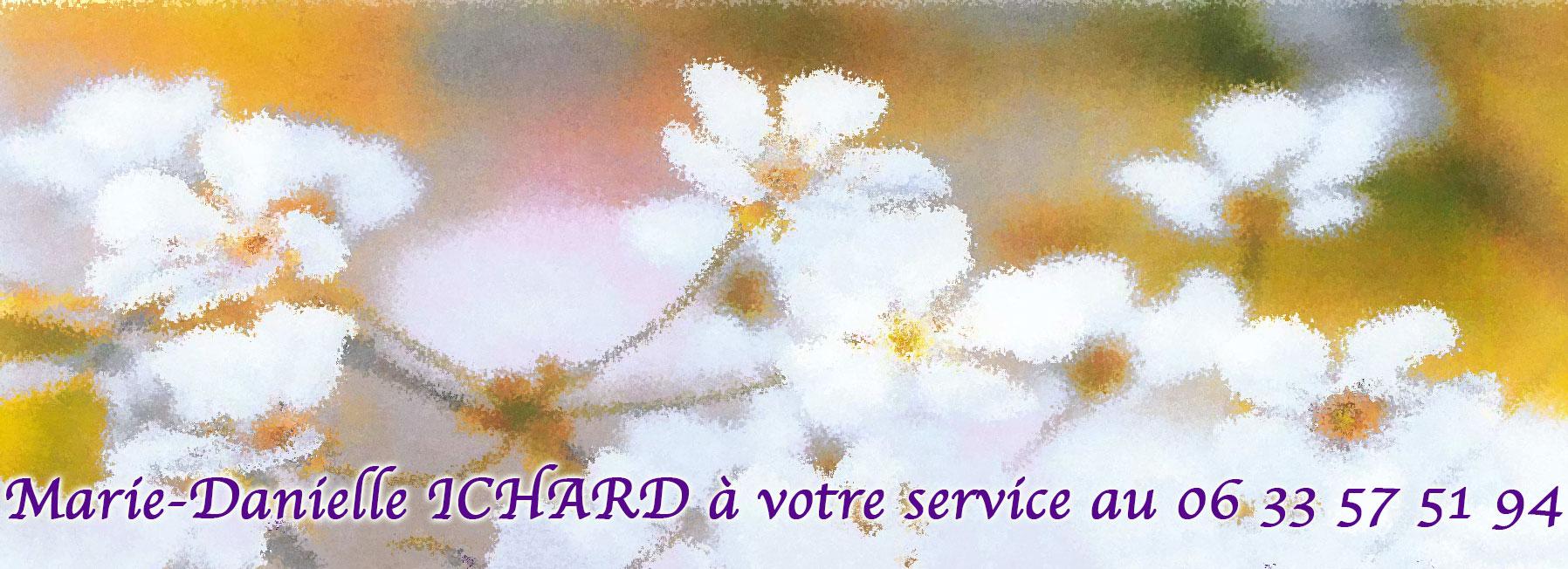 MD-service.jpg